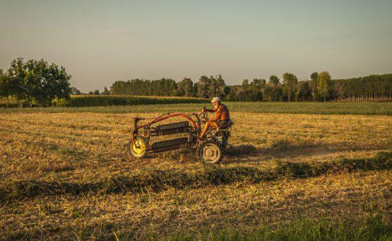 Campagna e industria, contadino che lavora con vecchi mezzi foto Antonio Boschi